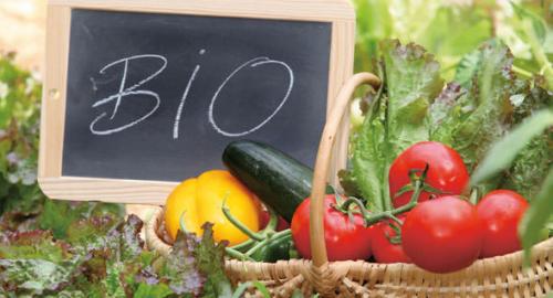 Mangiare Bio: Pro e Contro